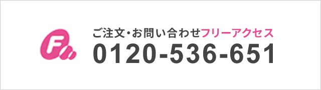 0120-536-651